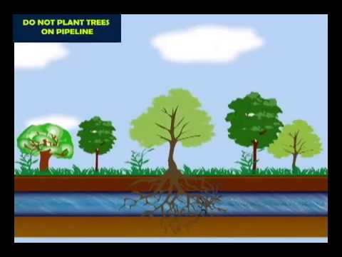 BPCL - Pipeline Safety_Youtube_thumb